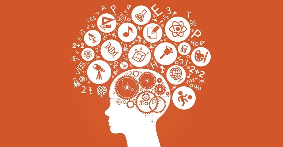 Li.Edu.Co. | Soluzioni per la Robotica Educativa e l'Apprendimento